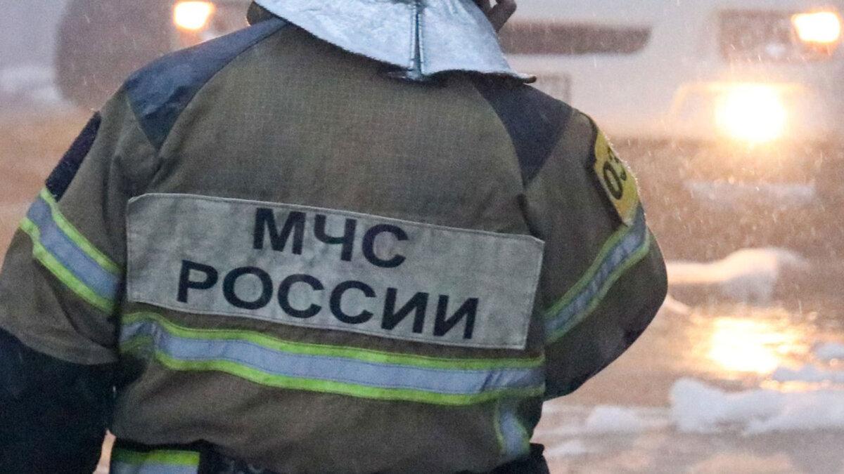 мчс России нашивка сотрудник спина