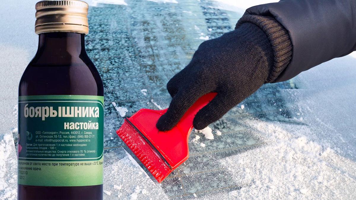 настойка боярышника замерзание стекла автомобиля