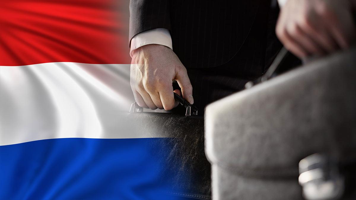 нидерланды политика флаг