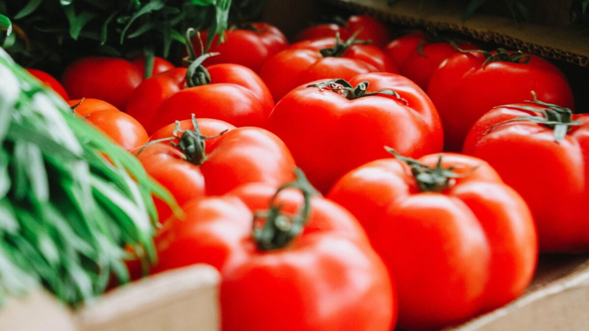 помидоры томаты на рынке