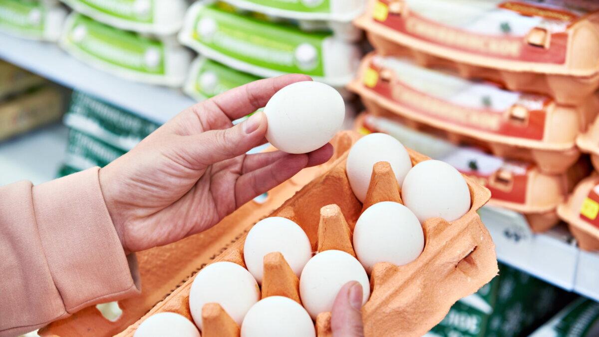 Яйца магазин десяток