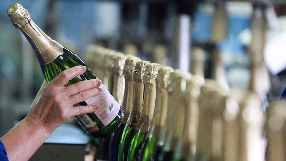 выбор шампанского на праздник