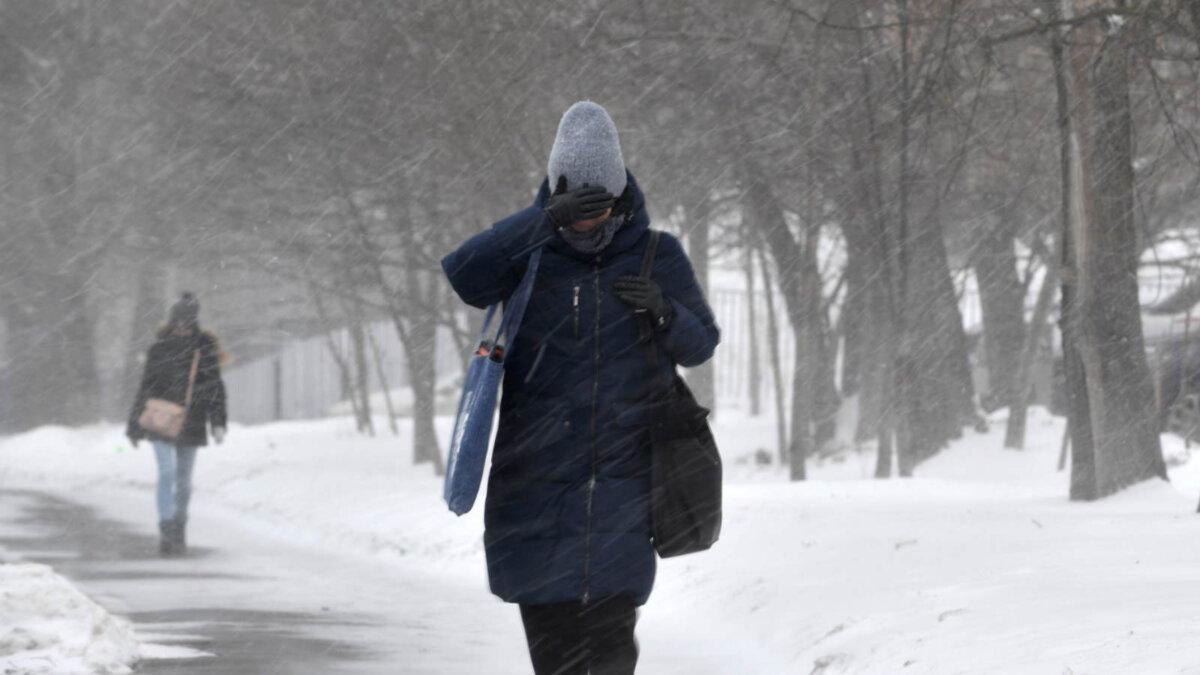 Погода метель ветер зима снегопад