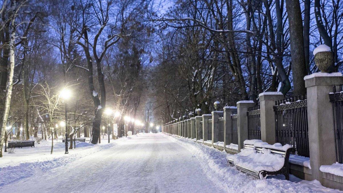 Ночные морозы парк лавочки город вечер