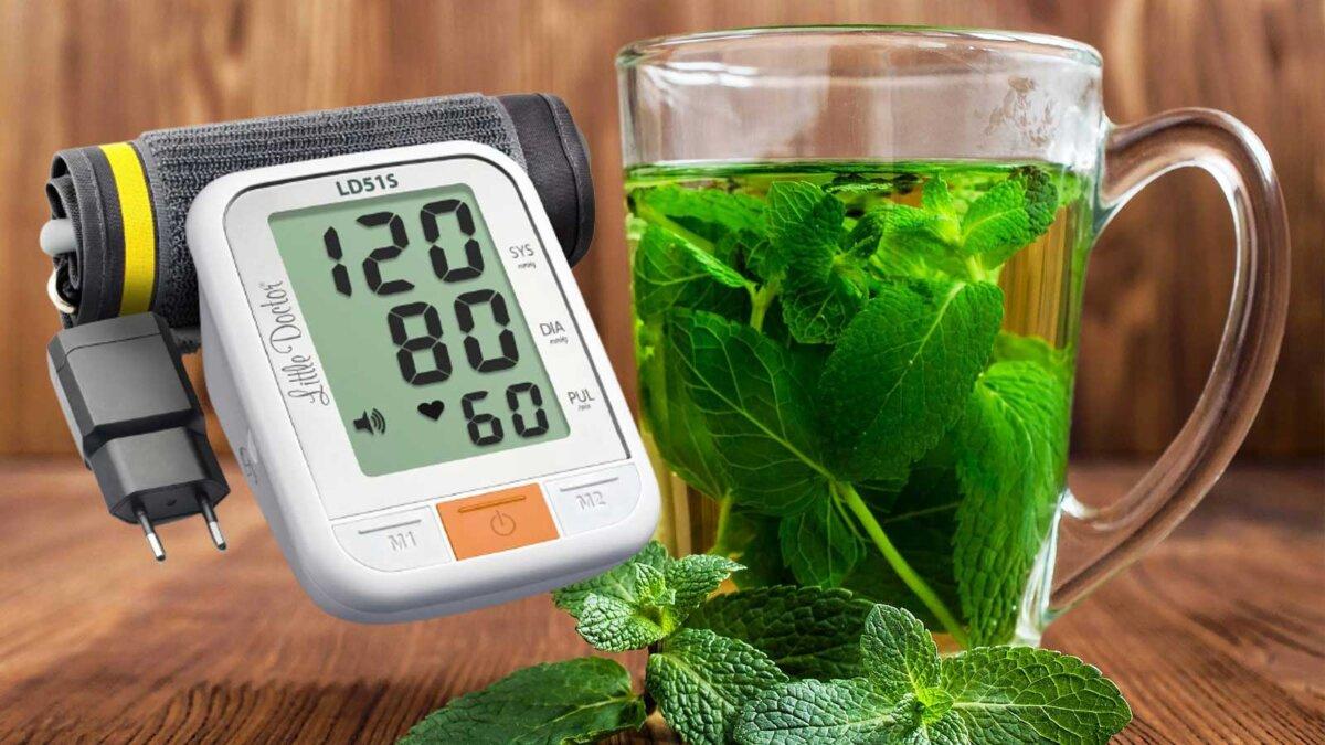Зеленый чай mint tea тонометр давление