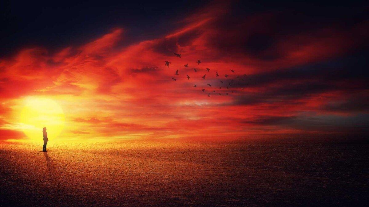 девушка на фоне солнца смотрит на птиц Surreal scenery view as a girl silhouette