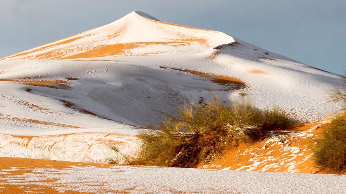 снег выпал в Сахаре