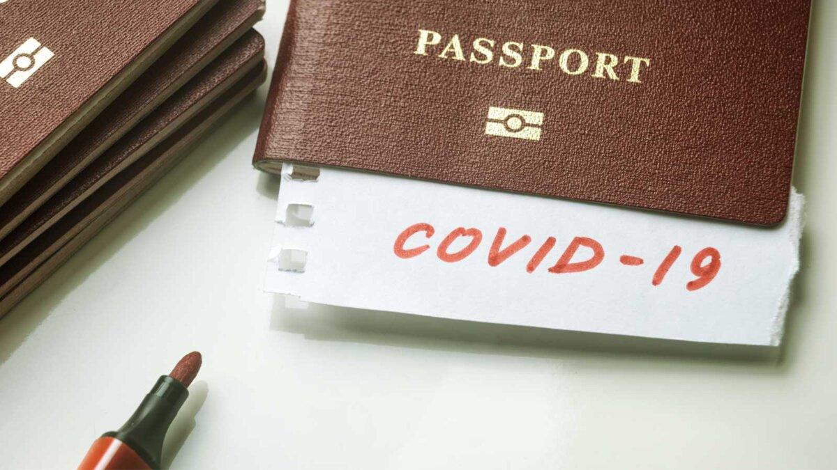паспорта ковид ручка
