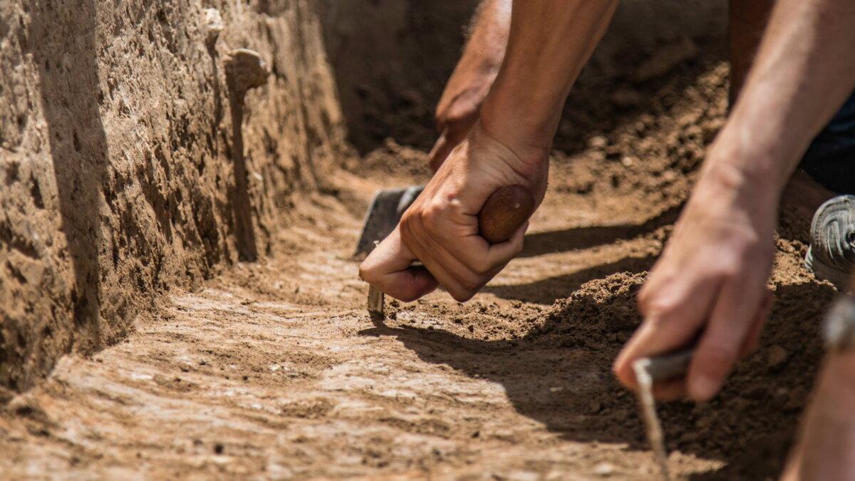 Археология раскопки четыре