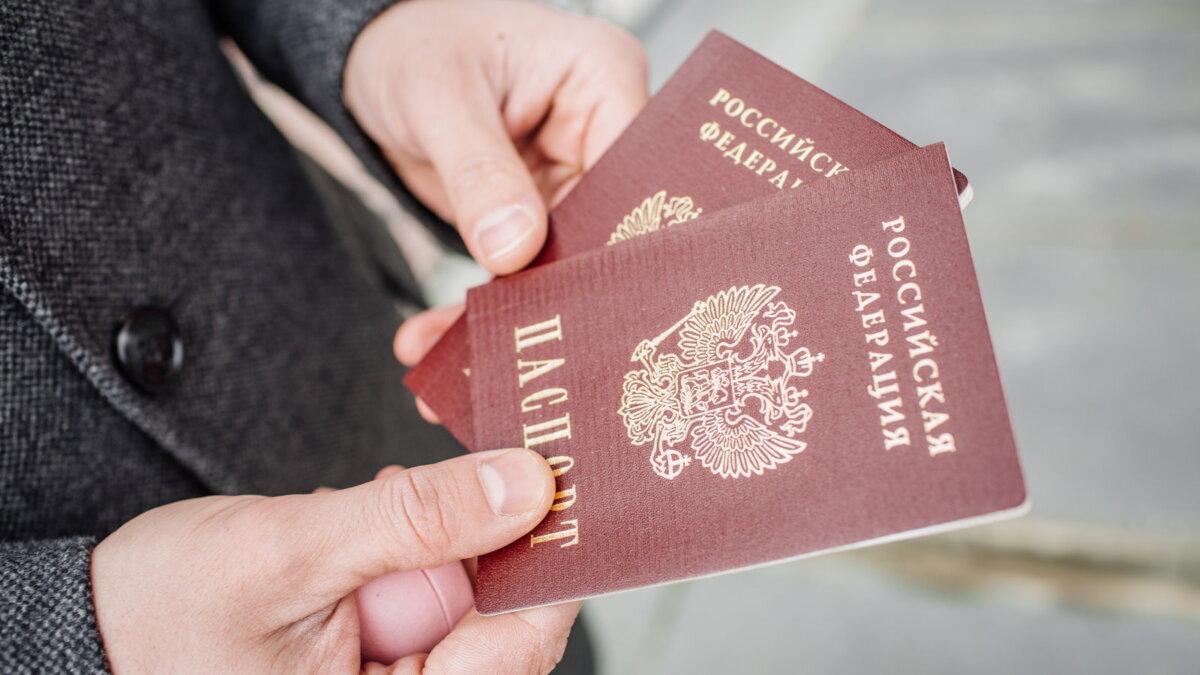 Российские паспорта российский в руках