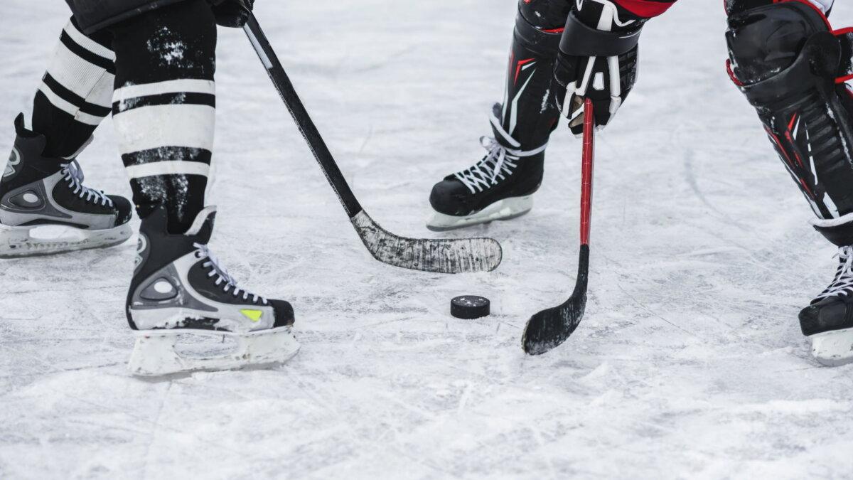 Хоккей шайба спорт один