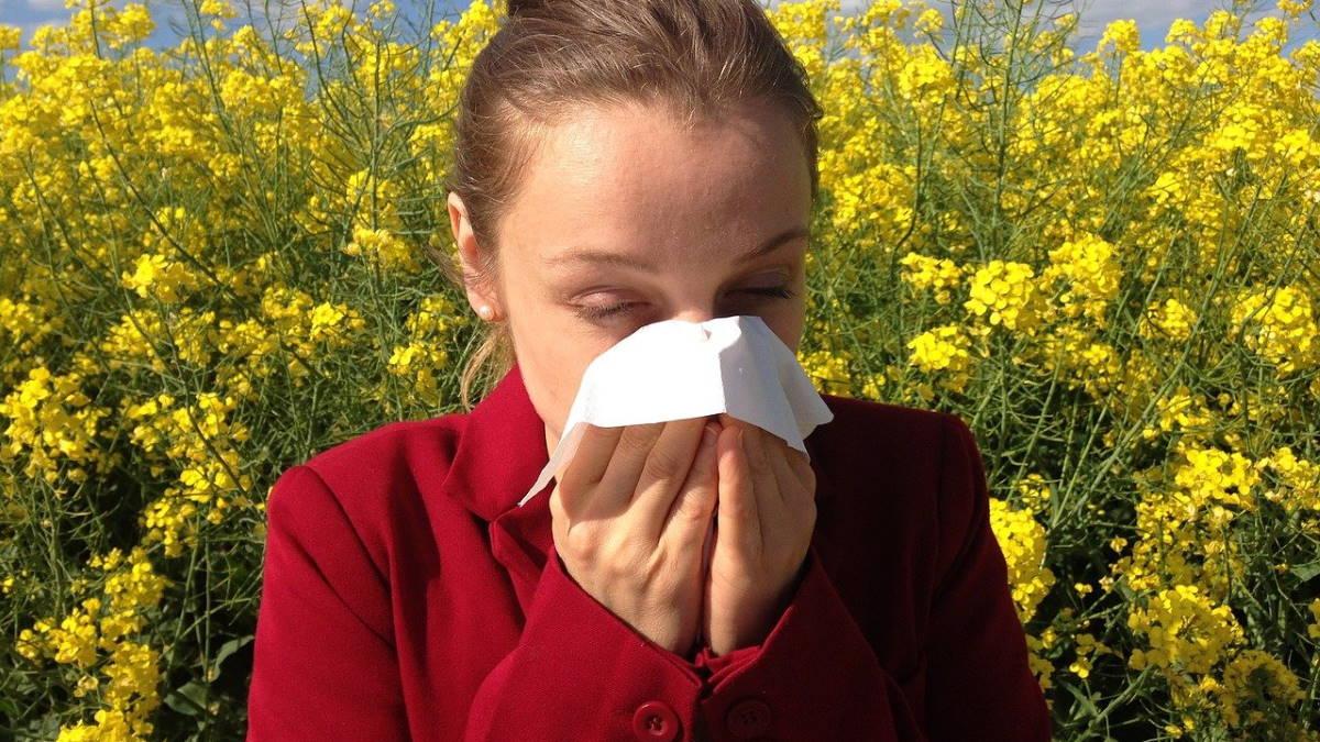 Аллергия цветение пыльца