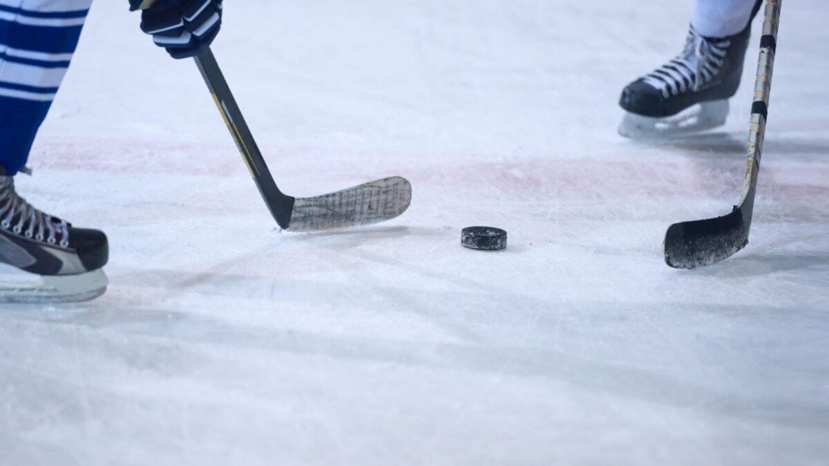 Хоккей шайба спорт два