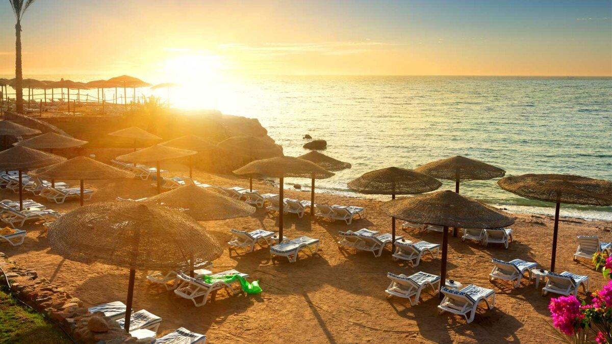 Египет никого нет Пляж на Красном море с зонтиками на закате