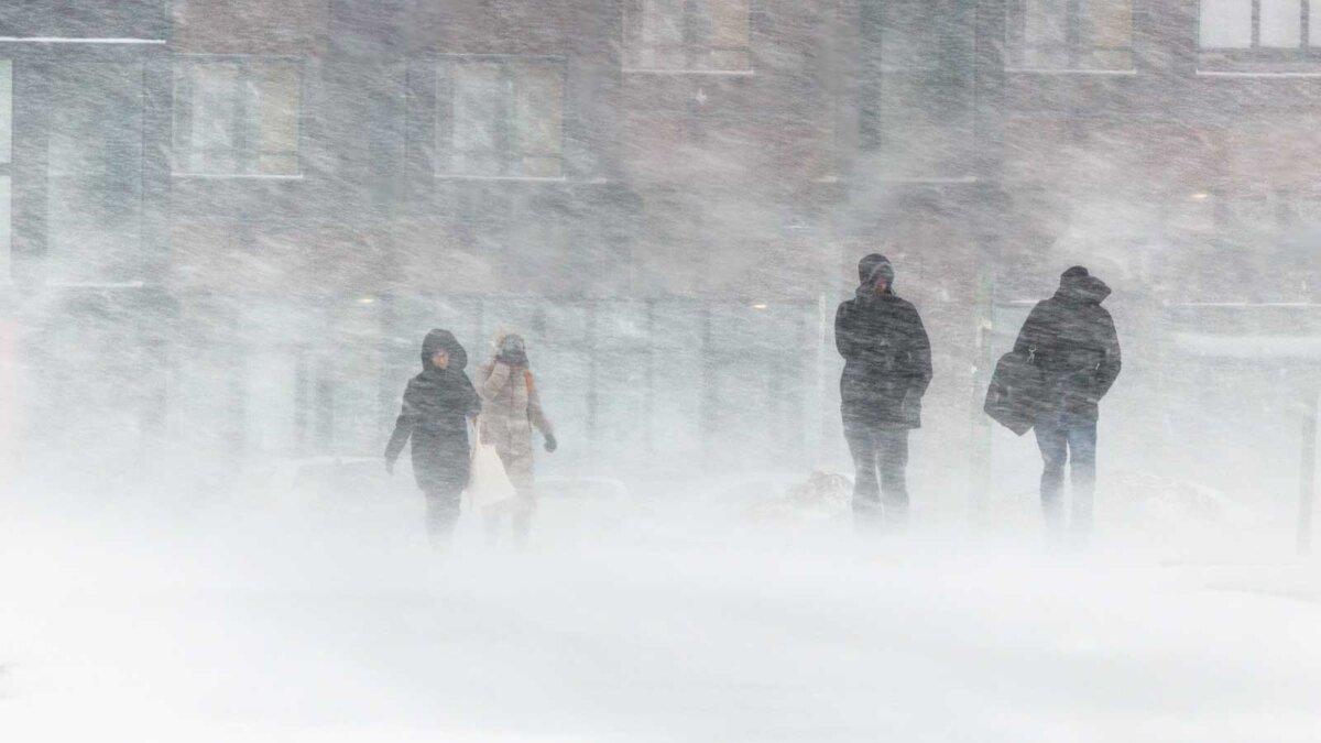 Снег метель люди зима