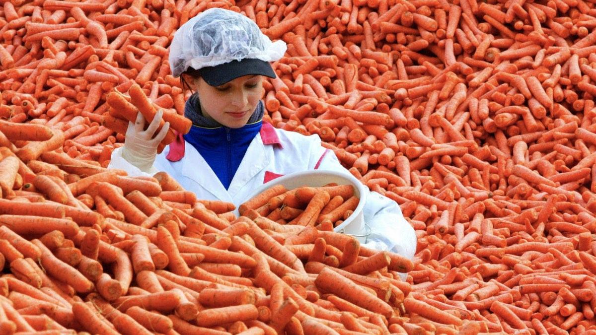 девушка морковь