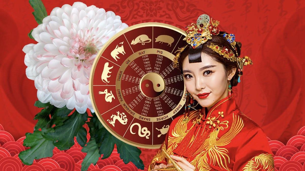 китаянка гороскоп хризантема