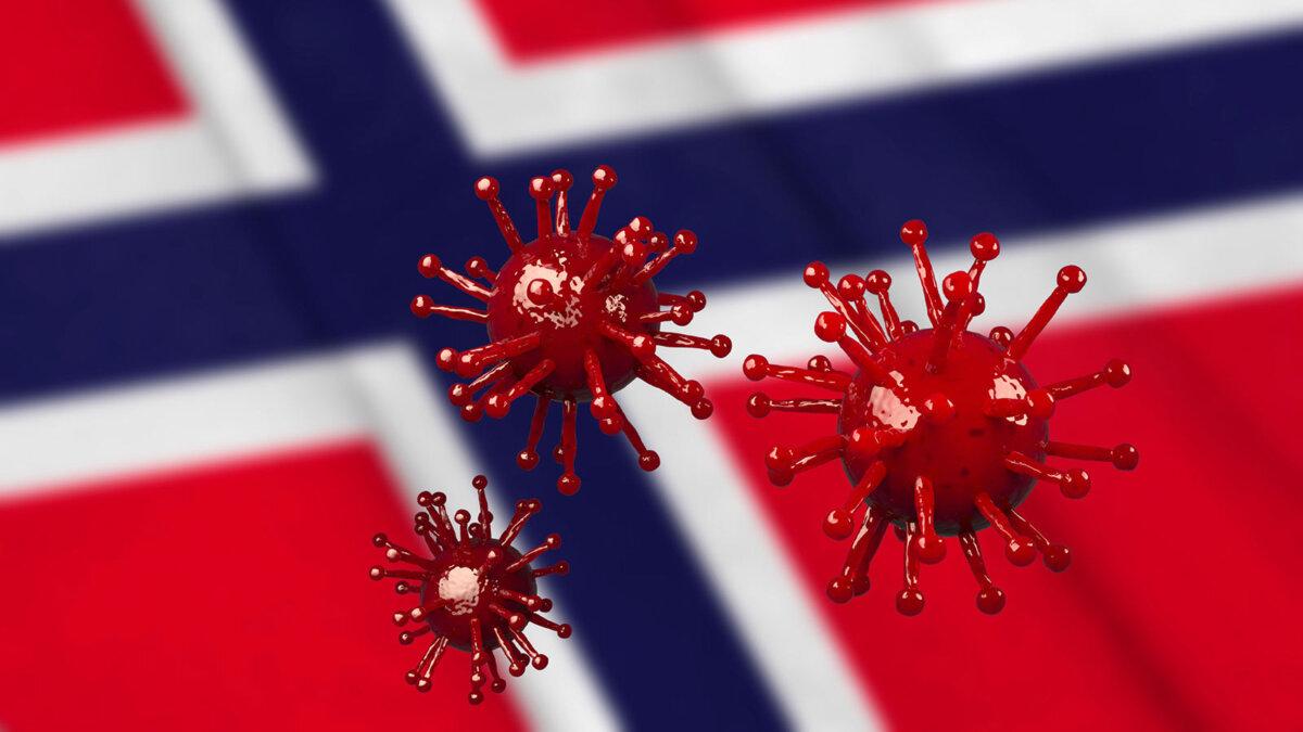 Норвегия флаг коронавирус covid-19 штамм