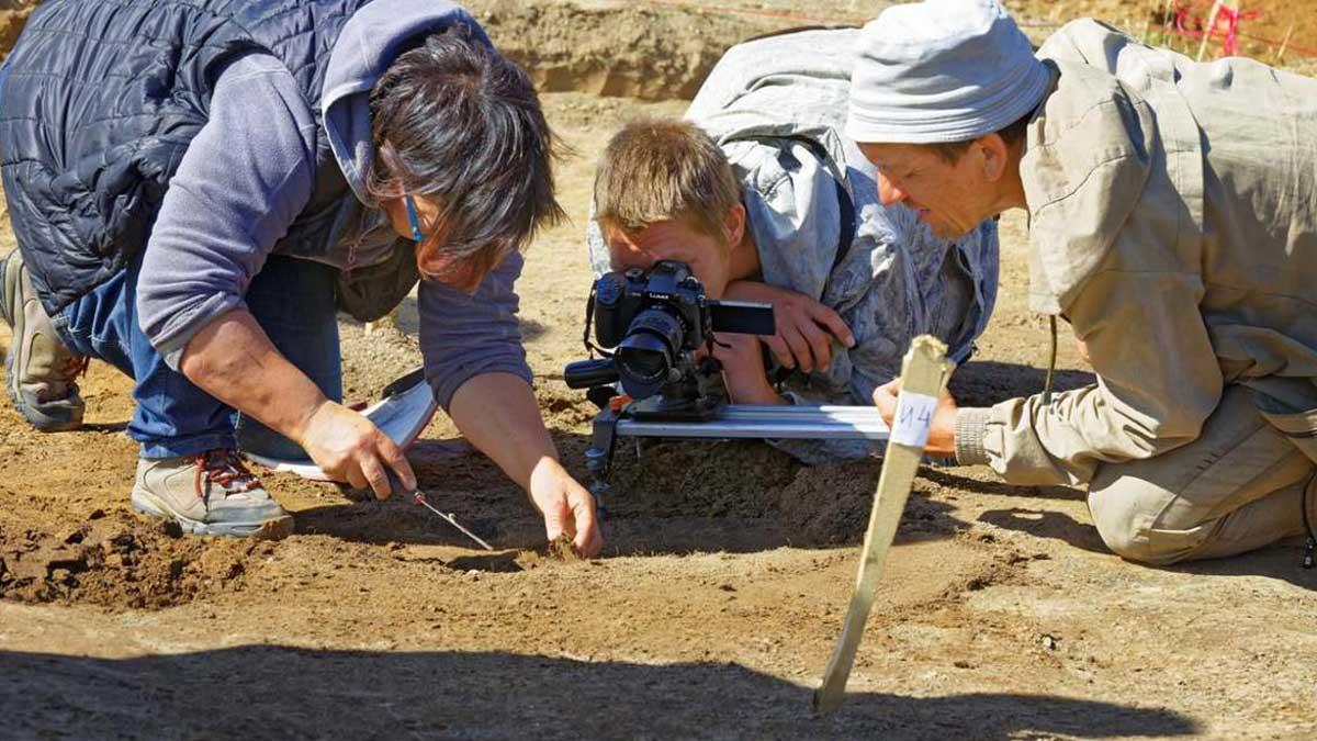 siberia excavations сибирь раскопки