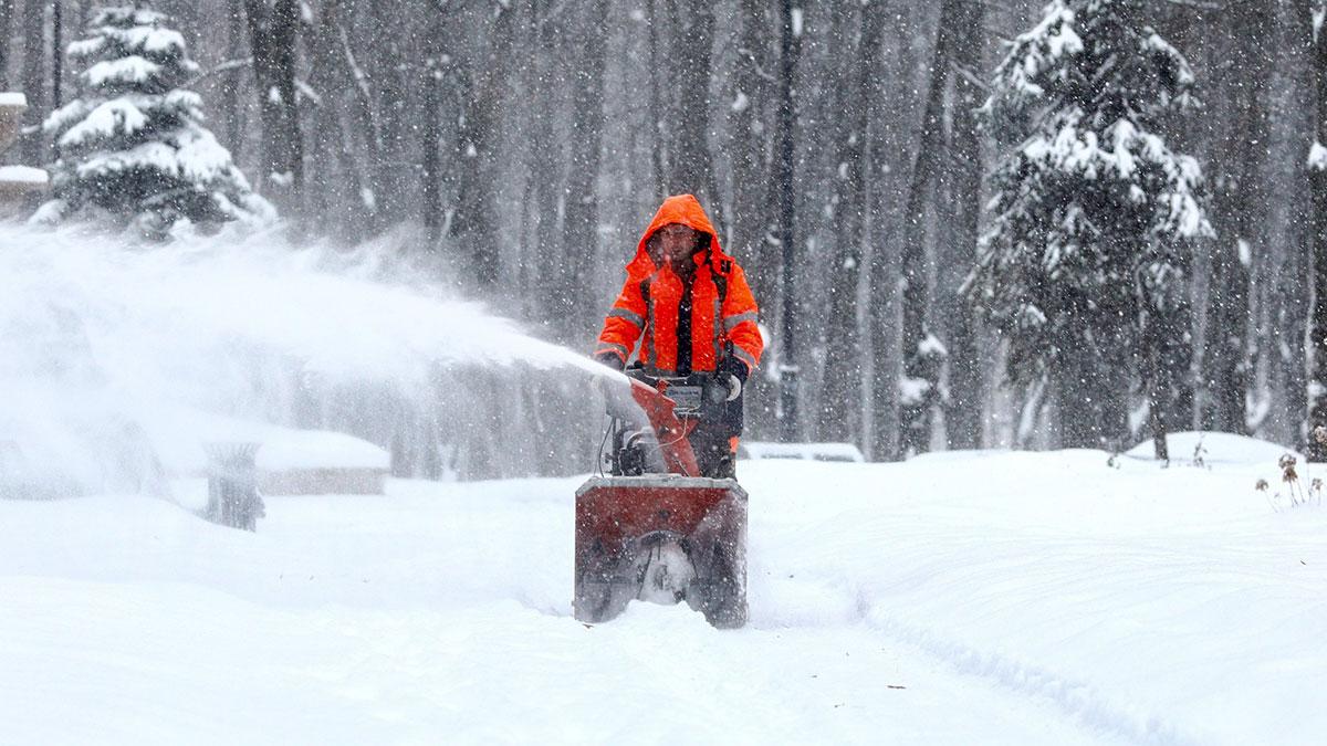 снегопад снег уборка коммунальные службы парк москва
