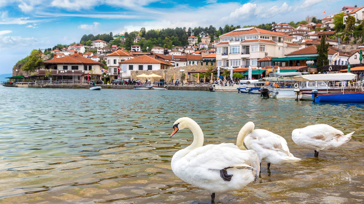 Македония озеро Охрид