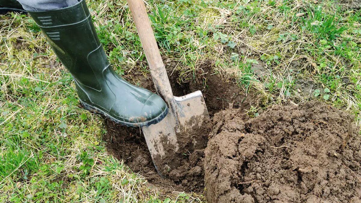 человек копает землю