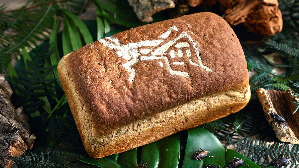 хлеб из насекомых