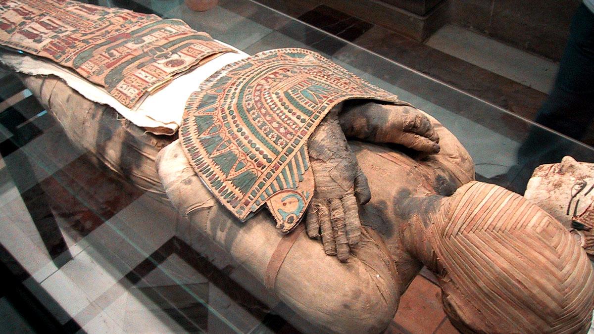 мумия древний Египет экспонат археология