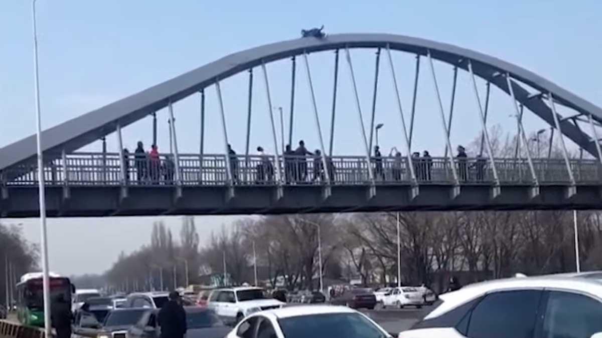 мужчина бежит по мосту