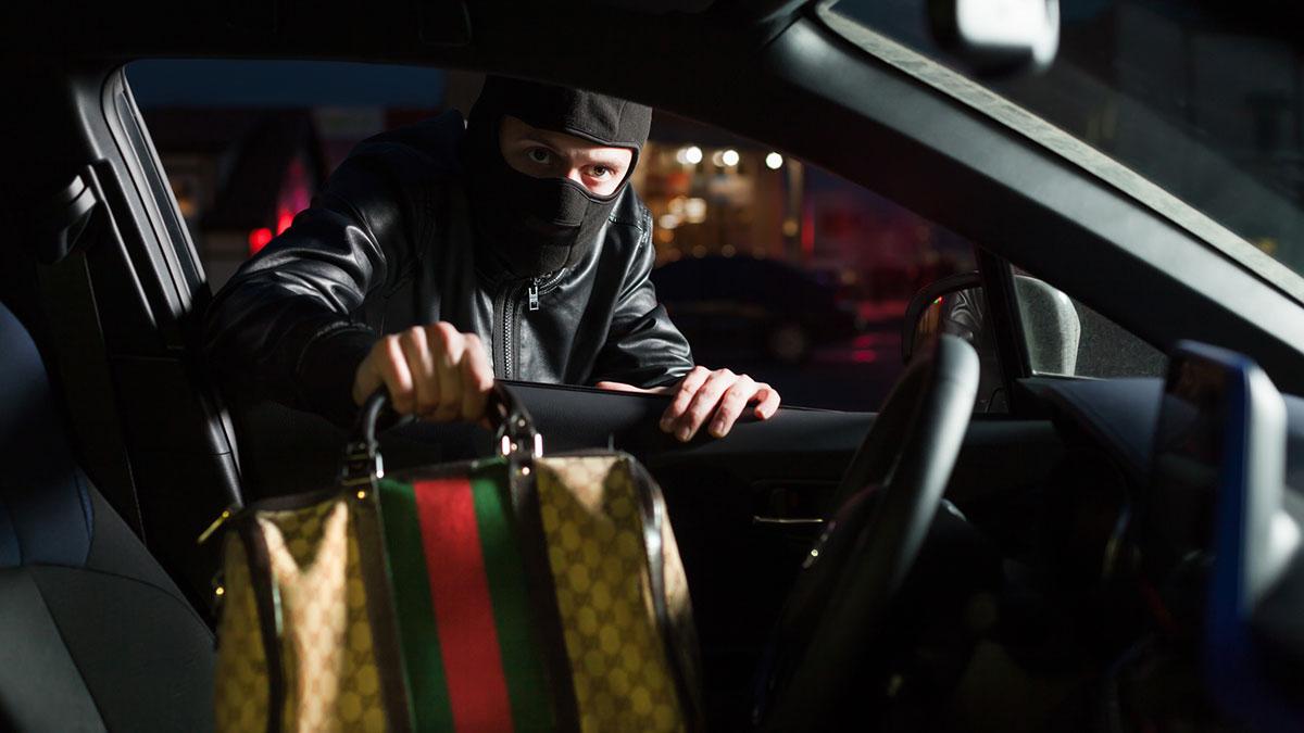 ограбление авто кража сумки преступник