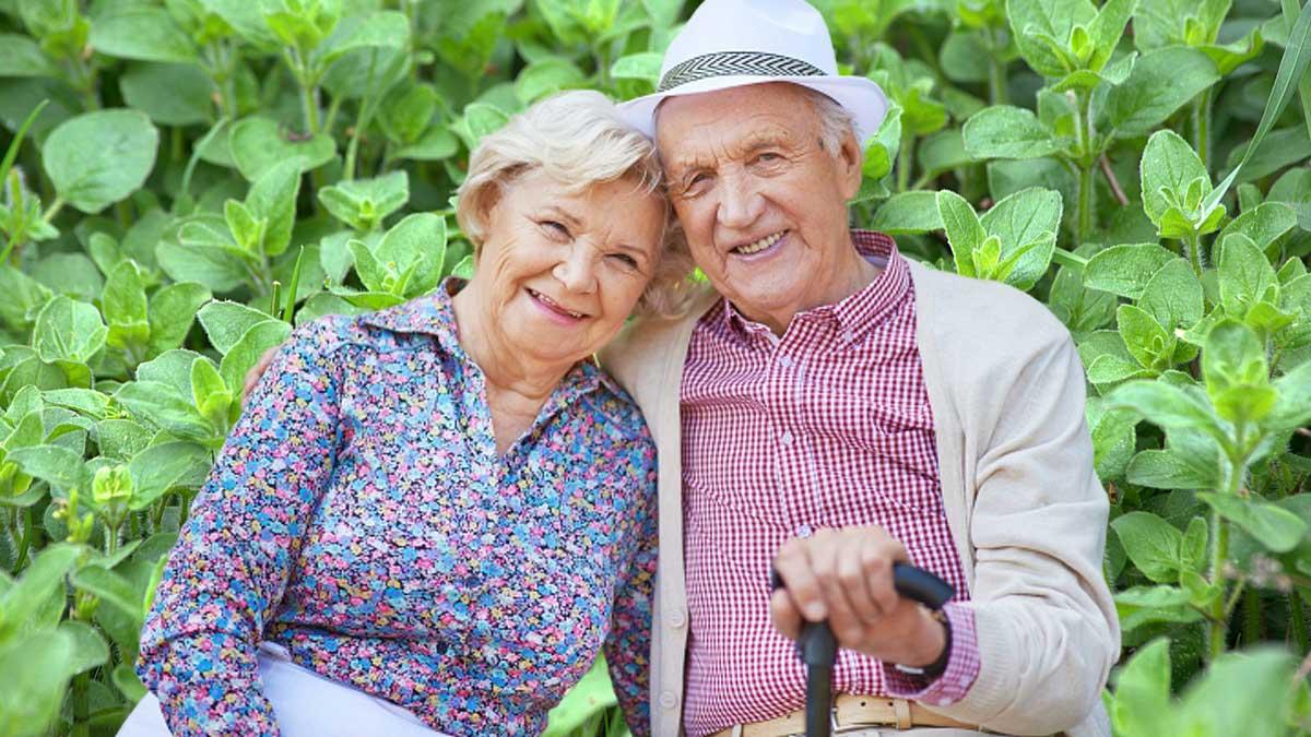 пожилая пара улыбаются обнимаются свежий орегано в саду