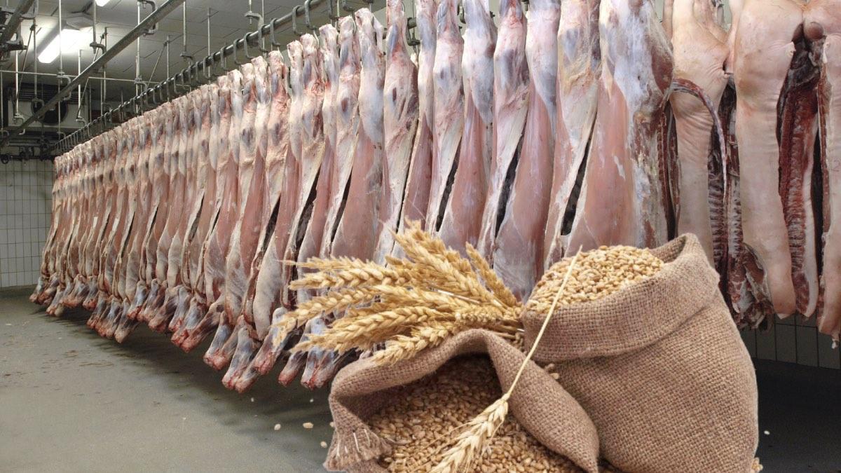 сельхозпродукция на экспорт