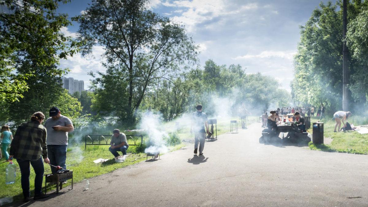 люди жарят шашлыки в парках москвы