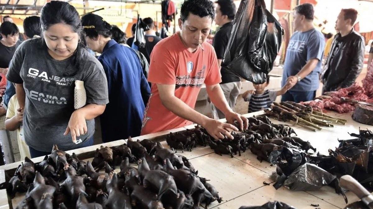 торговля дикими животными на рынке