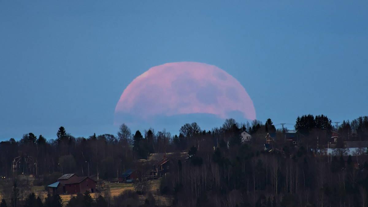 Суперлуние розовая Луна
