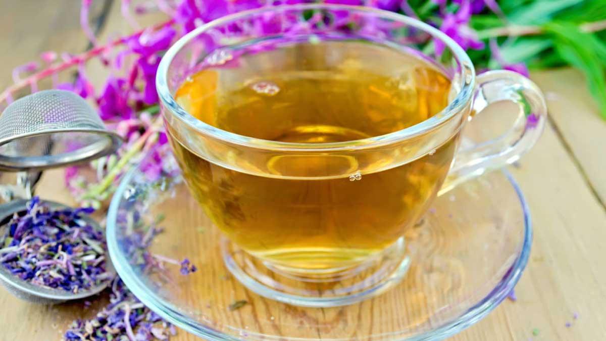 чай окопник чашка синяя трава
