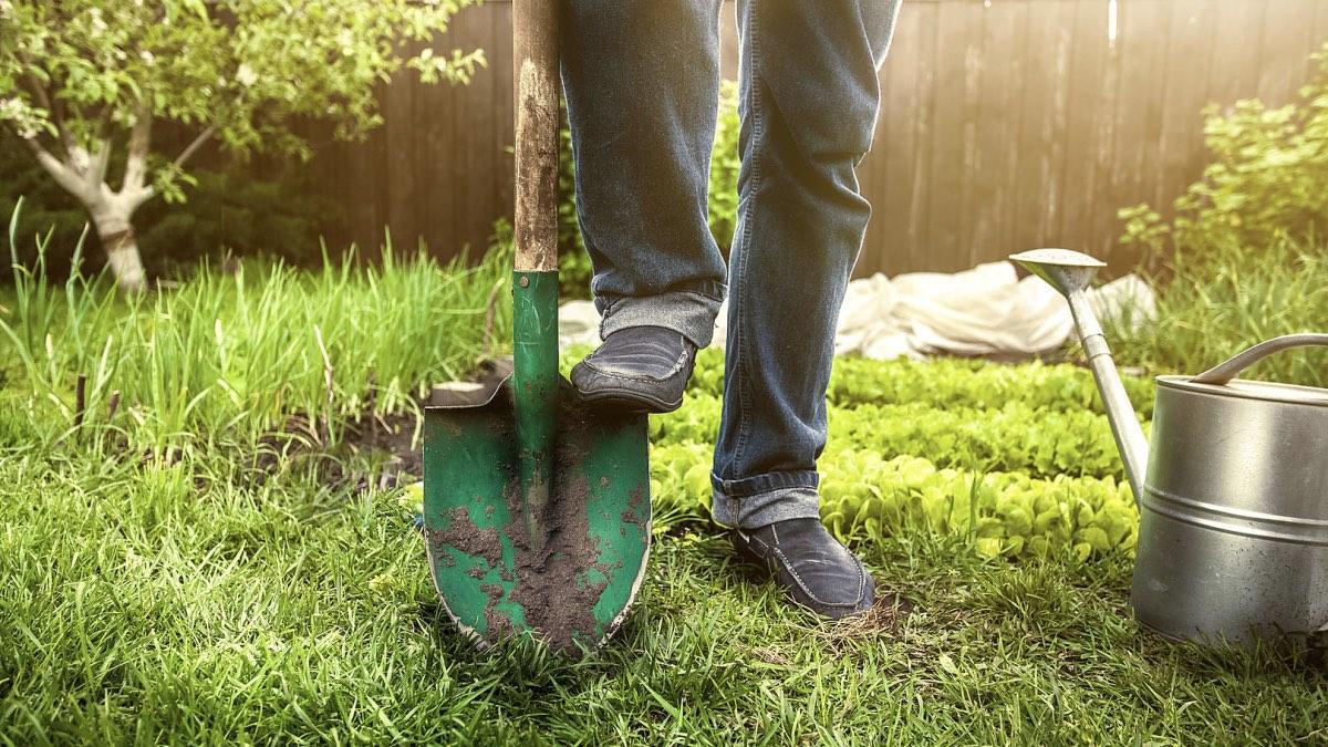 майские праздники дача лопата