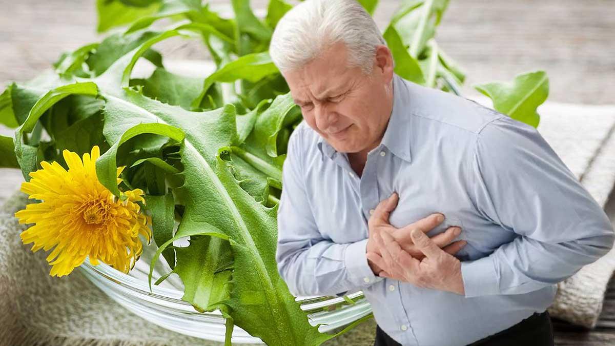 мужчина болит сердце одуванчики в тарелке
