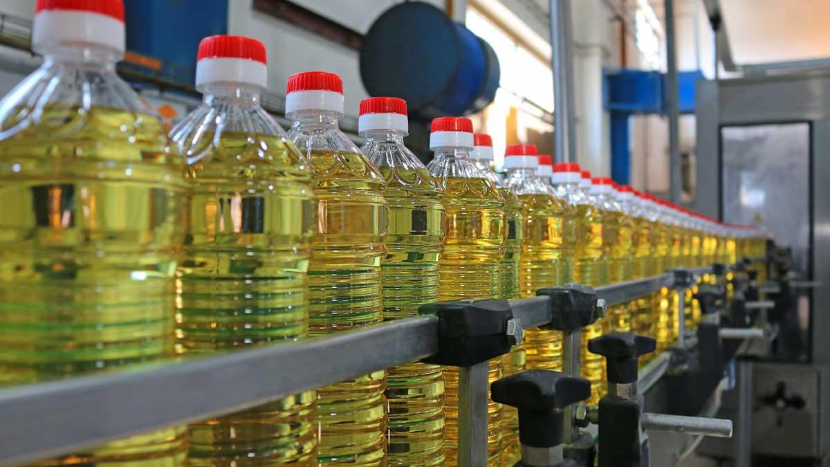 производство масло подсолнечное