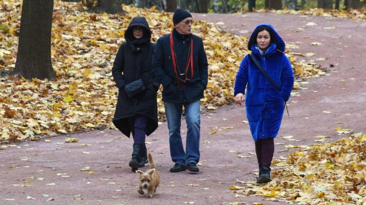 Прогулка в московском парке
