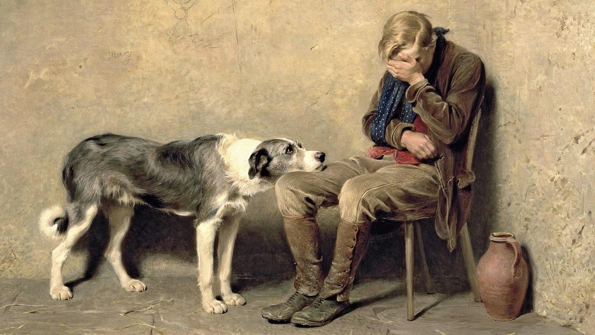 верные собаки