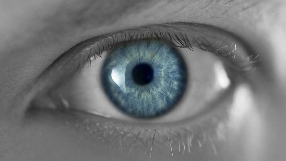 взгляд глаз смотрит