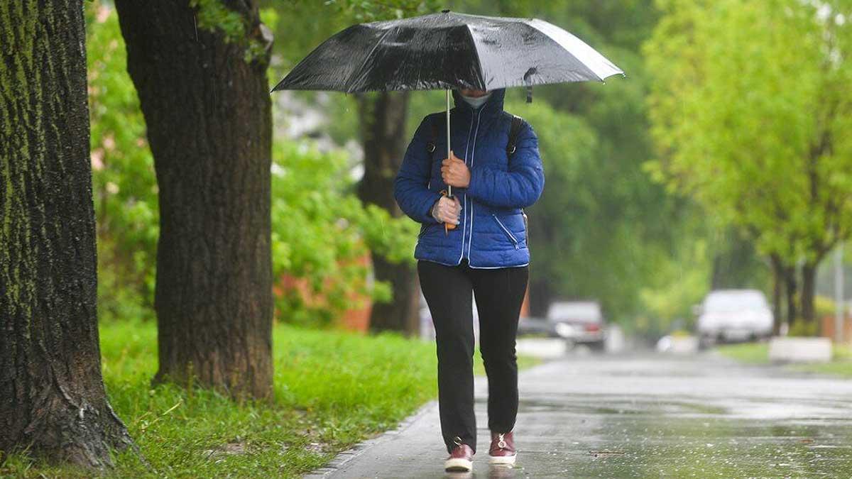 женщина парк дождь зонтик