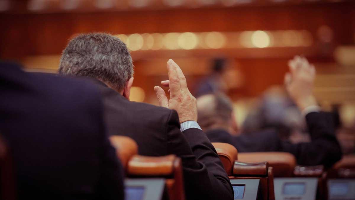 Депутат румынского парламента голосует