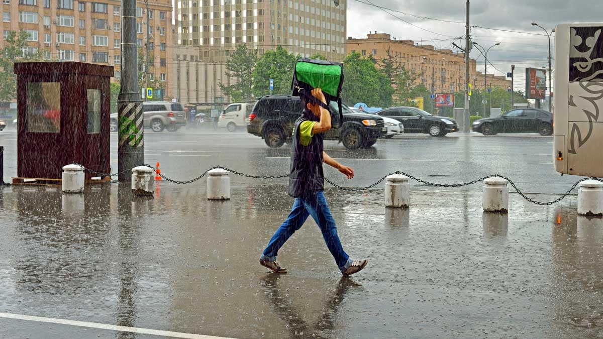 Дождь Москва