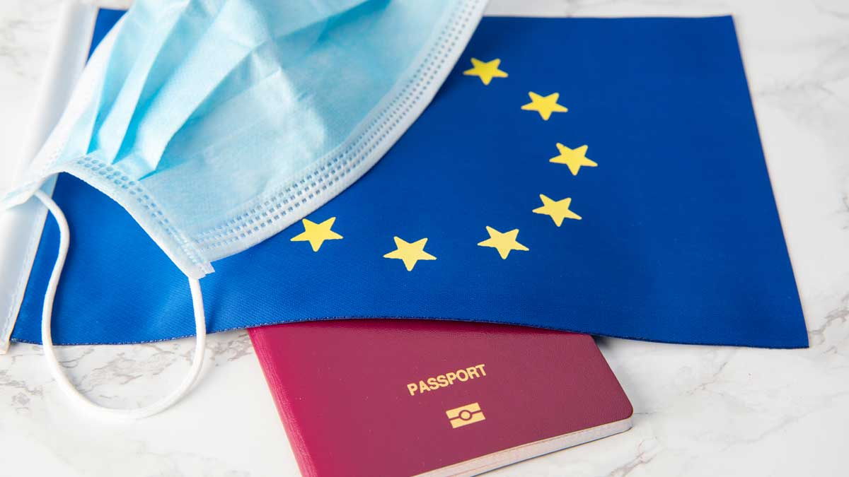 Евросоюз медицинская маска паспорт