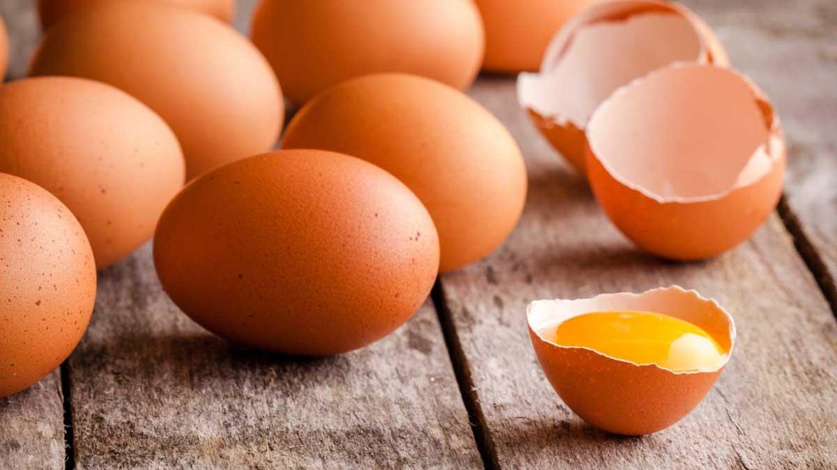 Свежие яйца