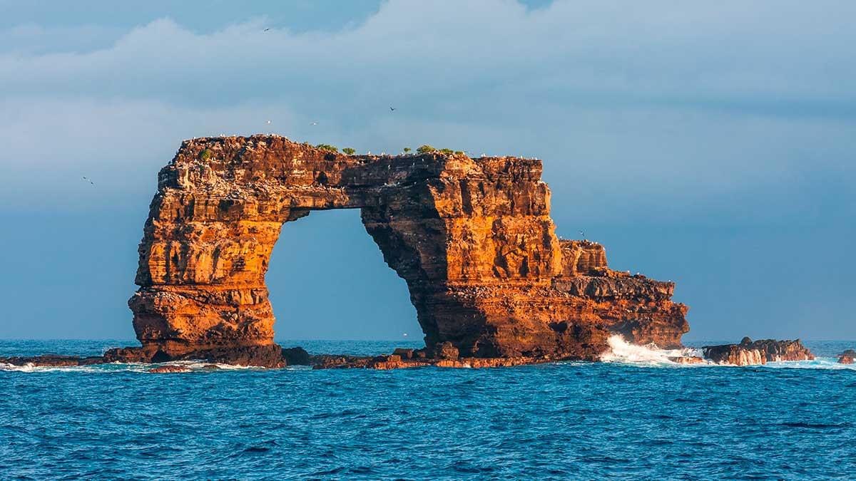 Знаменитая арка Дарвина