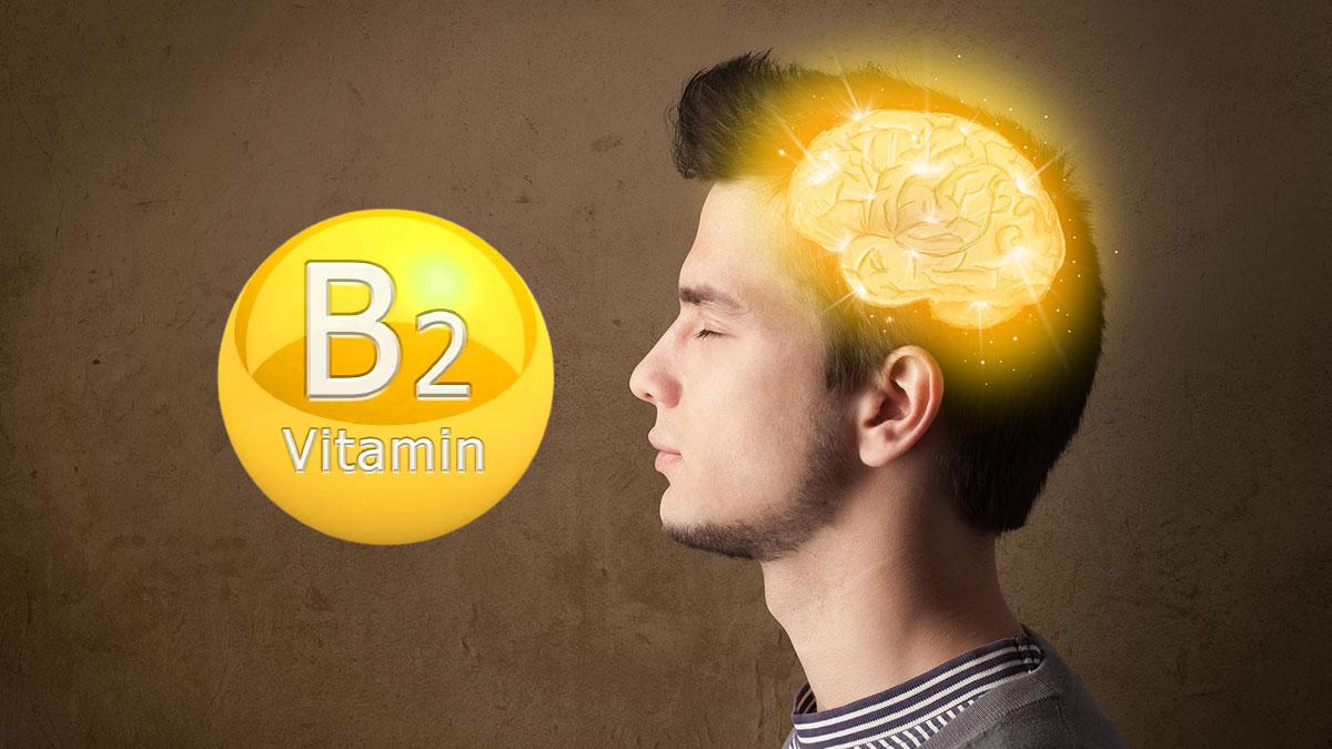 витамин б2 работа мозга