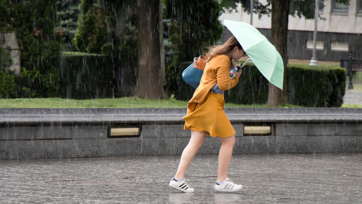 дождь ветер гроза ливень зонт